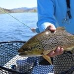 Brown trout fly fishing is available for guests at Melfort Village